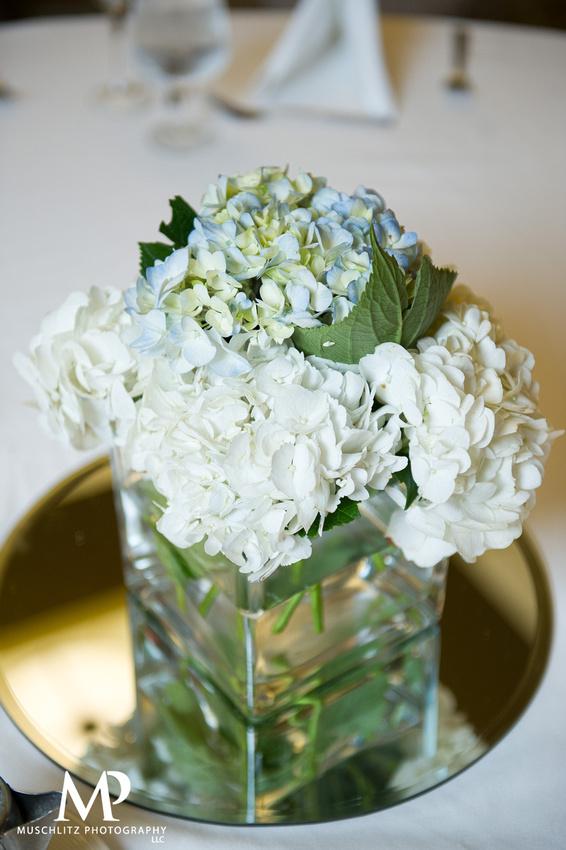 romantic-spring-wedding-columbus-ohio-the-hilton-polaris-muschlitz-photography
